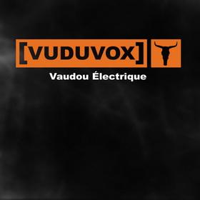 VAUDOU ELECTRIQUE